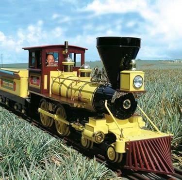 Plantation train colr