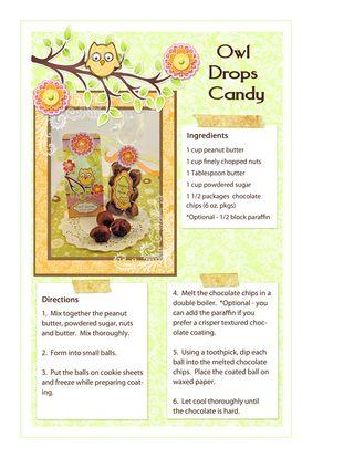 Darcie Owl Drops lr