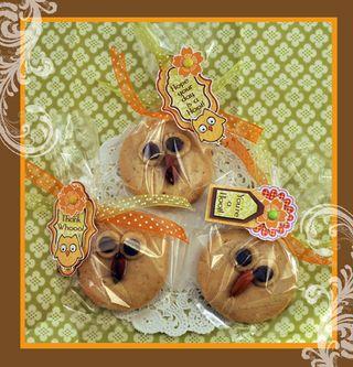 Darcies Owl Cookies