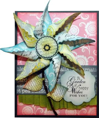 Darcies Pinwheel Card